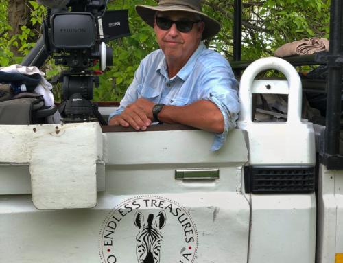 Für eine schnellere Postproduktion: Wildlife-Kameramann Steve Lumpkin setzt auf Solo10G von Sonnet