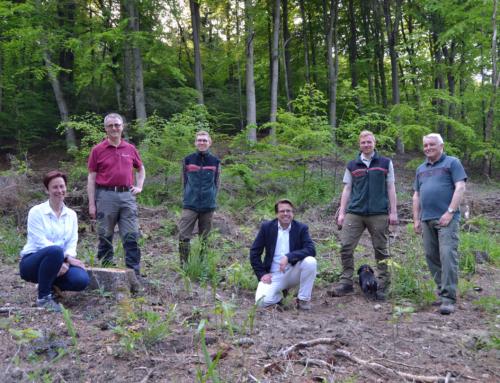 Perschmann sponsert jährlich 2.000 Bäume für den Klimaschutz